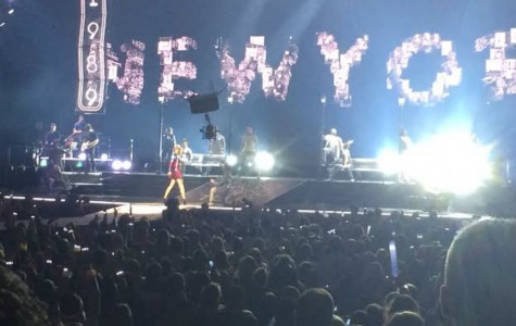 Taylor Swift Concert Review