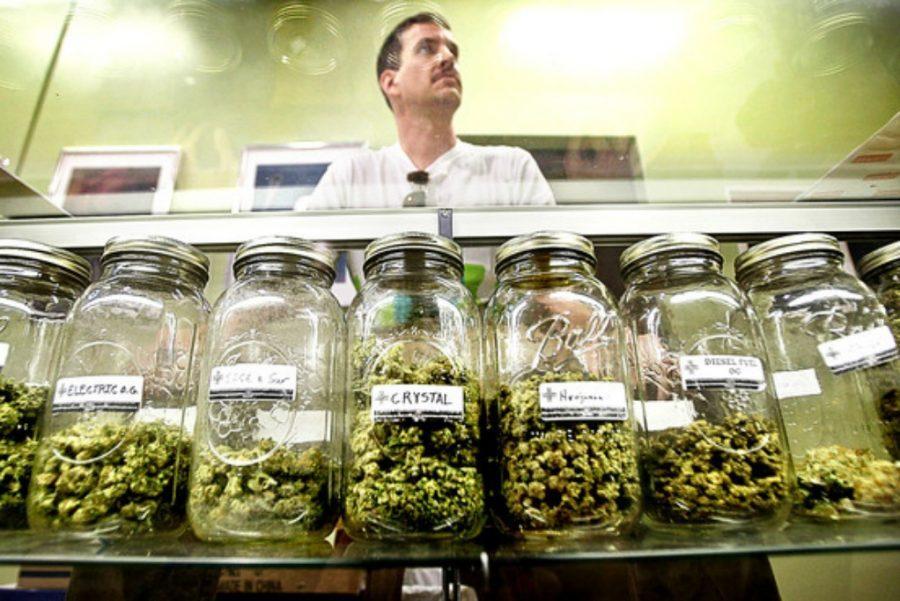 I scream, you scream, WEED all scream for legalization!
