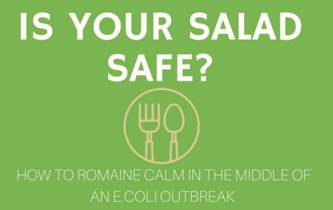 How to Romaine Calm During an E.Coli Outbreak