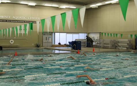 Edina Girls' Swim and Dive speeds to the top: intense practice leads to notable success