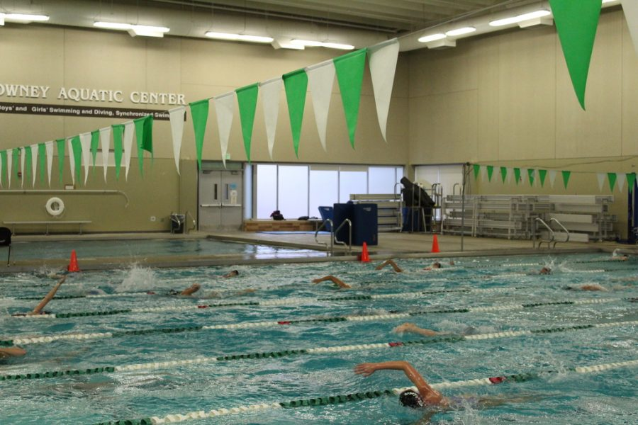Edina+Girls%27+Swim+and+Dive+speeds+to+the+top%3A+intense+practice+leads+to+notable+success