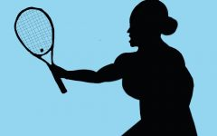 Fighting for a higher standard: confronting sexism in professional sports