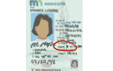 Minnesota introduces new non-binary option on licenses