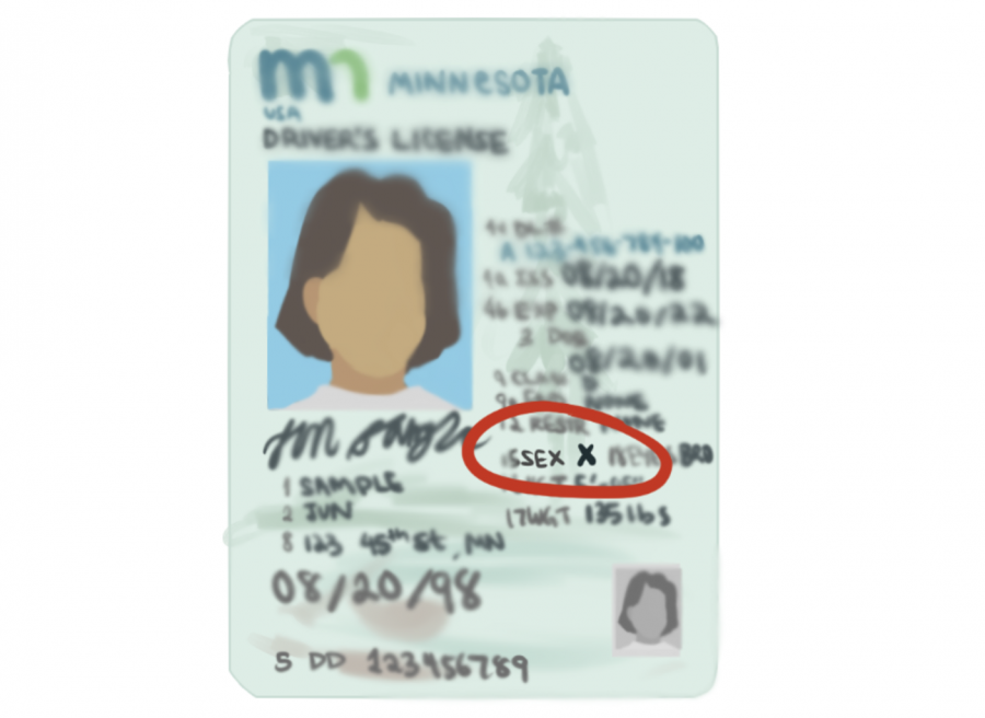 Minnesota+introduces+new+non-binary+option+on+licenses