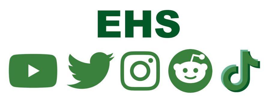 Online teen stars influence Edina High School sophomores