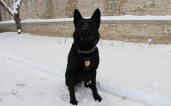 EHS to employ drug-sniffing dogs in parking lot: Police dogs on campus set to act as a further deterrent against student drug use