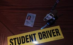 Minnesota driving schools are selling appointments to students