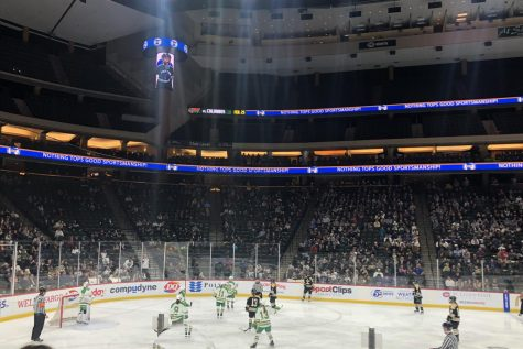 Growing the game: Edina Girls' Hockey Team finds their silver lining