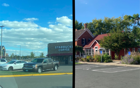 Through images: local businesses vs. large chains